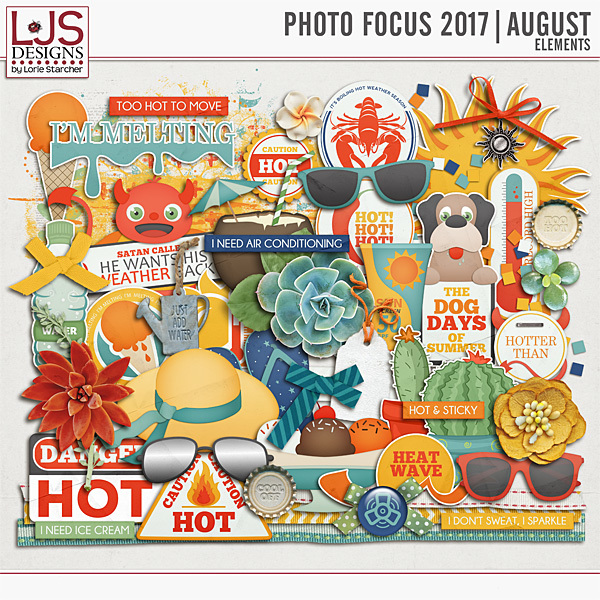 Photo Focus 2017 - August Elements