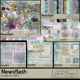 Newsflash Mega Bundle