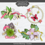 Summer Blessings Clusters