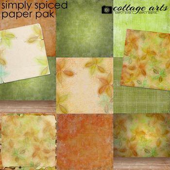 Simply Spiced Paper Pak
