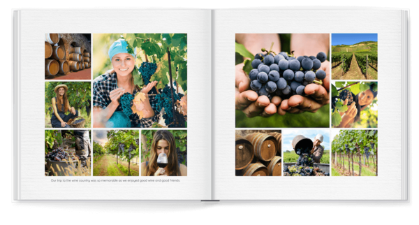 Simple White Plus Photo Book