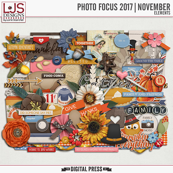 Photo Focus 2017 - November Elements