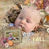 Feeling Like Fall Bundle