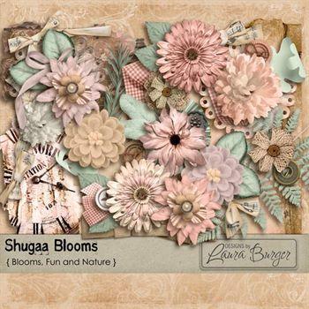 Shugaa Blooms