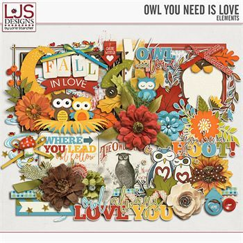 Owl You Need Is Love - Elements