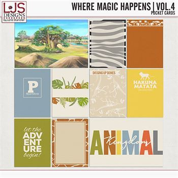 Where Magic Happens - Volume 4 Pocket Cards