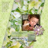 Botanical Beauty Paper Pak