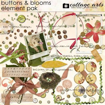 Buttons & Blooms Element Pak