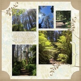 Natural Pre-designed Book 12x12