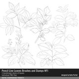 Pencil Line Leaves Brushes And Stamps No. 01