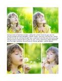Picture Perfect - Distressed Daisies Pre-designed Book 8.5x11 Portrait