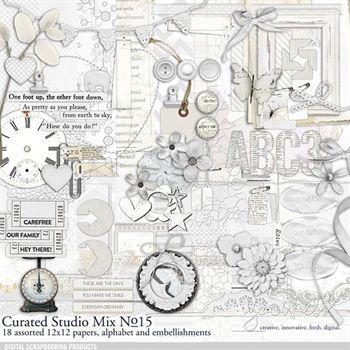 Curated Studio Mix Scrapbooking Kit No. 15