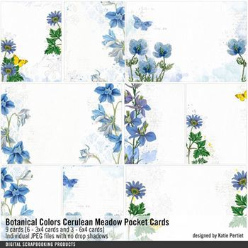 Botanical Colors Cerulean Meadow Pocket Cards