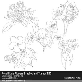 Pencil Line Flowers Brushes And Stamps No. 02