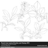 Pencil Line Leaves Brushes And Stamps No. 02