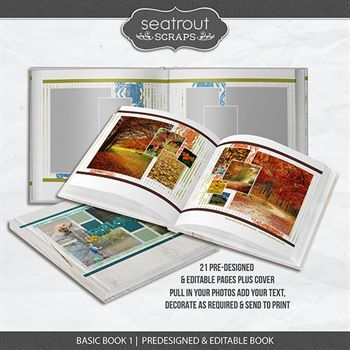 Basic Book 1 - Predesigned & Editable