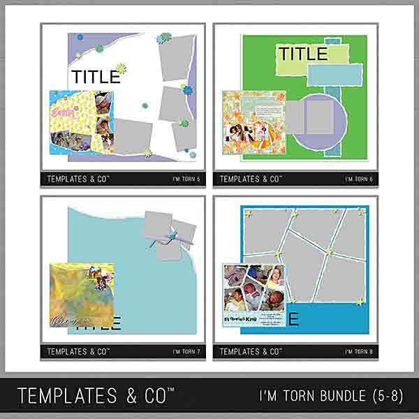 I'm Torn Bundle 5-8