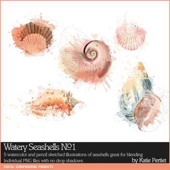 Watery Sea Shells No. 01