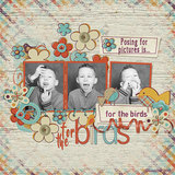 For The Birds - Individual Parts - Decorated Papers