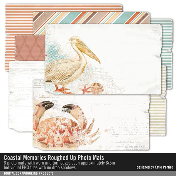 Coastal Memories Roughed Up Photo Mats