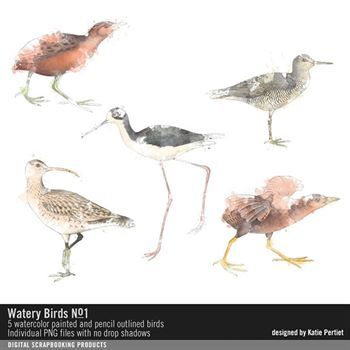 Watery Birds No. 01