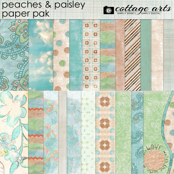 Peaches And Paisley Paper Pak