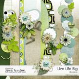 Live Life Big Bundle
