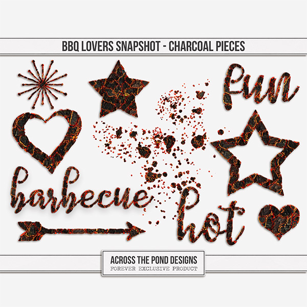 BBQ Lovers Snapshot - Charcoal Pieces