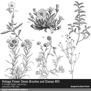 Vintage Flower Stems Brushes And Stamps No. 03