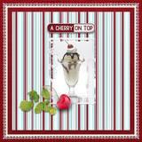 Cherry Sweet Burlap Papers
