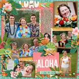 At The Luau Cards