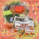 October Workshop - Discounted Bundle