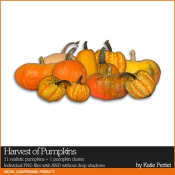 Harvest Of Pumpkins Digital Art - Digital Scrapbooking Kits
