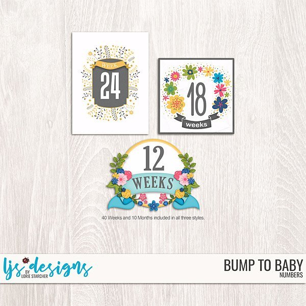 Bump To Baby Numbers