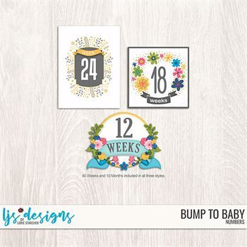 Bump To Baby Numbers Digital Art - Digital Scrapbooking Kits