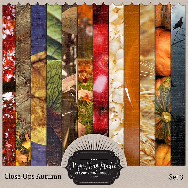 Close-ups Autumn - Set 3 Digital Art - Digital Scrapbooking Kits