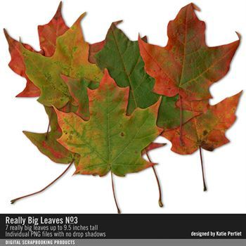 Really Big Leaves No. 03 Digital Art - Digital Scrapbooking Kits