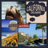 Escape To California Collection