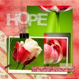 Beautiful Soul - Hope Scrap.words