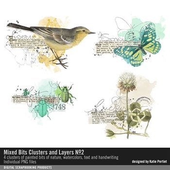 Mixed Bits Clusters And Layers No. 02 Digital Art - Digital Scrapbooking Kits