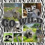 Zoo Days Mega Bundle