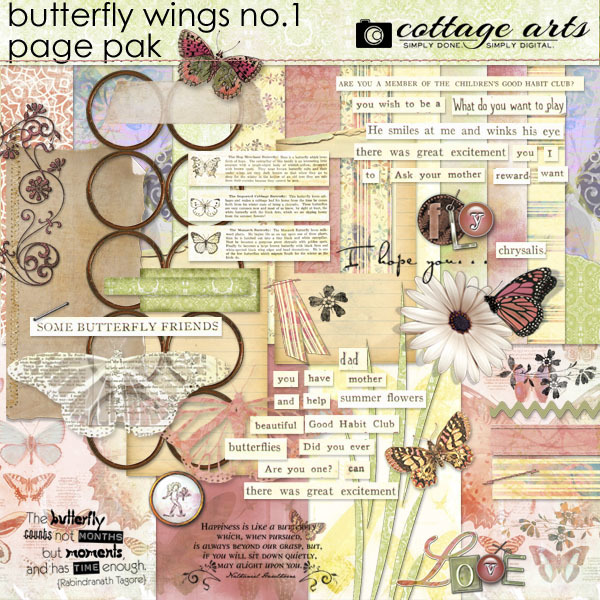 Butterfly Wings 1 Page Pak Digital Art - Digital Scrapbooking Kits