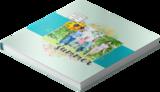 Lickety Split Book Series Number 5