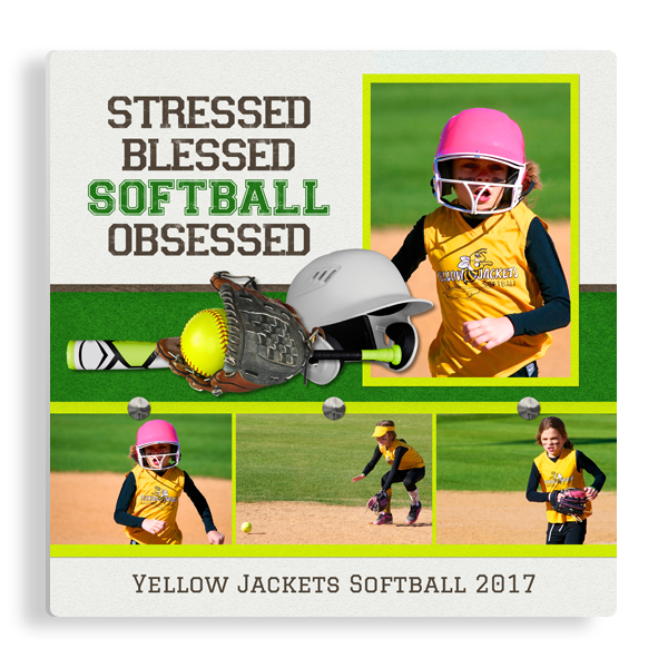 Softball Obsessed Panel