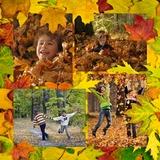 Autumn Windows Templates Sets 1-4