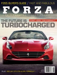 Forza 134 cover