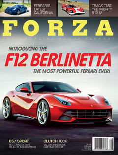 Forza 118 cover