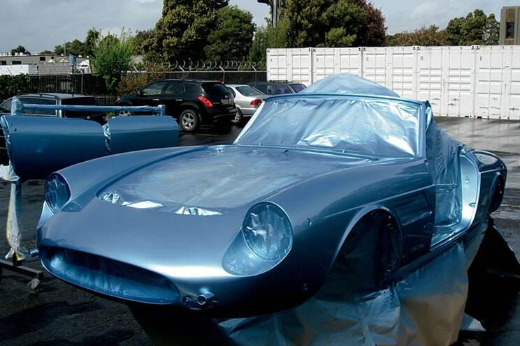 Blue Swan 14
