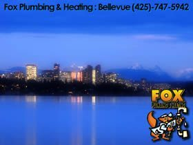 Bellevue Plumbing Sewer Line Water Heater Repair