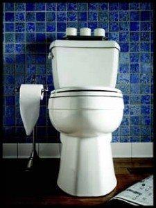 Toto GMAX Toilet